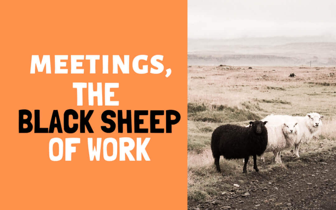 Meetings: the black sheep of work – 3 reasons to hold a meeting
